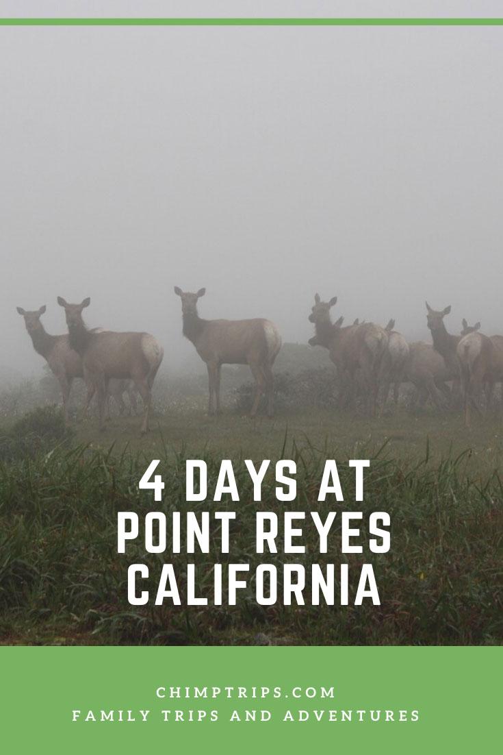 CHIMPTRIPS - 4 days at Point Reyes, California