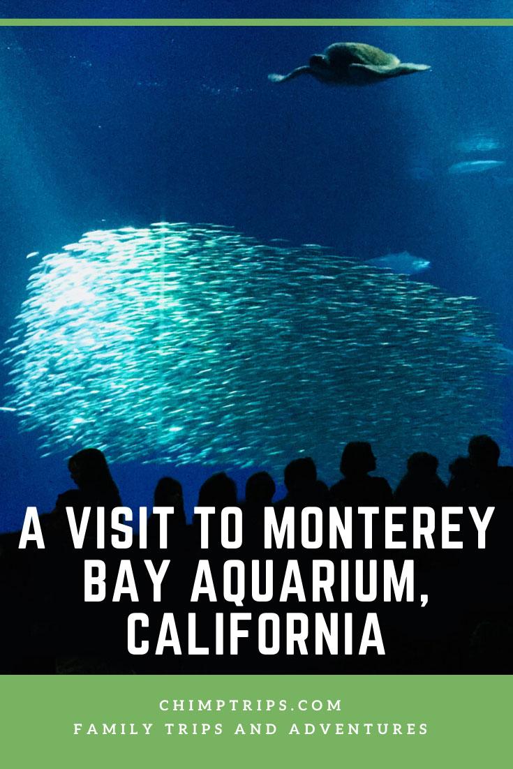CHIMPTRIPS - A visit to Monterey Bay Aquarium, California