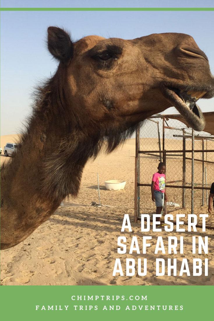 Pinterest: A desert safari in Abu Dhabi