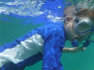 Snorkelling on Turtle Islands beach shore