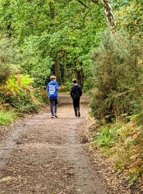 Walks in Surrey with kids