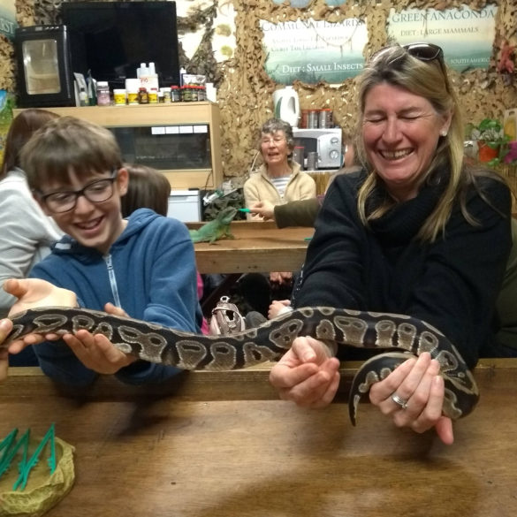 Holding a python at the Reptile Experience, Saudersfoot, Wales