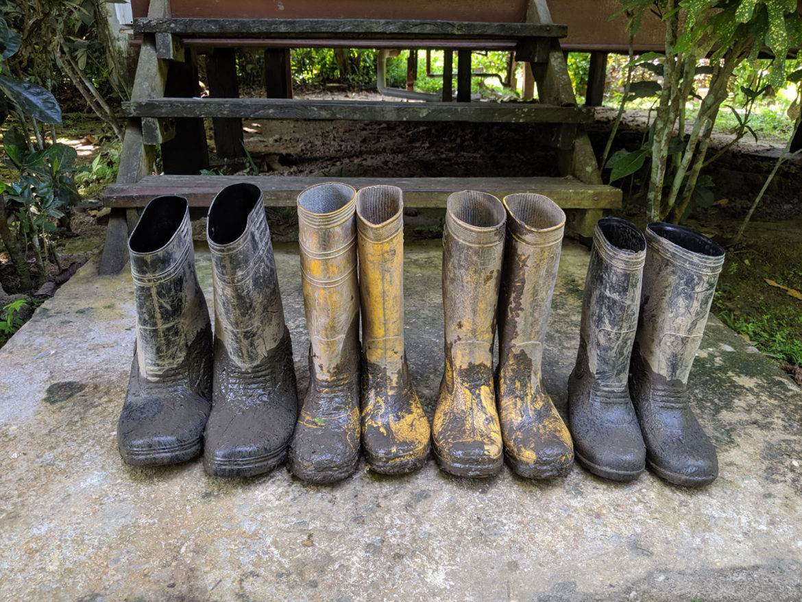 Wellies at the ready for Rainforest walk, Borneo