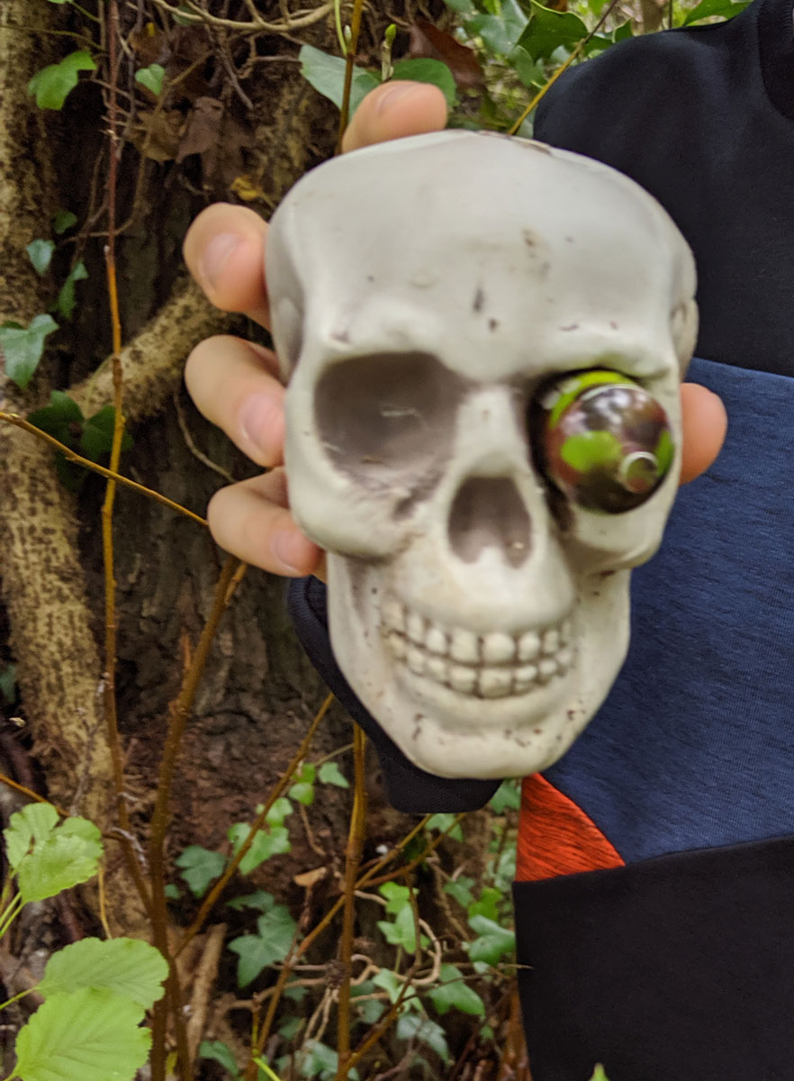 Fun skull Geocache