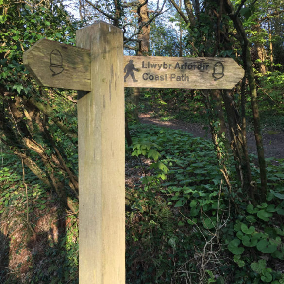 Coastal Path, Pembrokshire, Wales