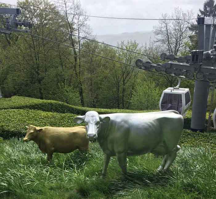 statues of cows, in pasture by cable cars, Matlock, Peak District