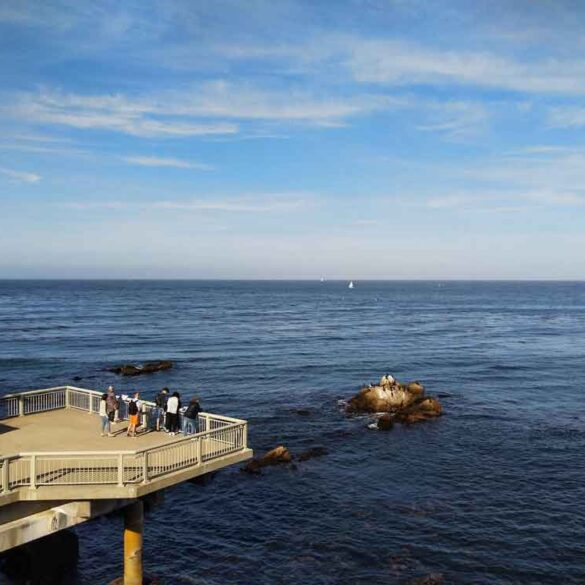 Monterey Bay Aquarium view point