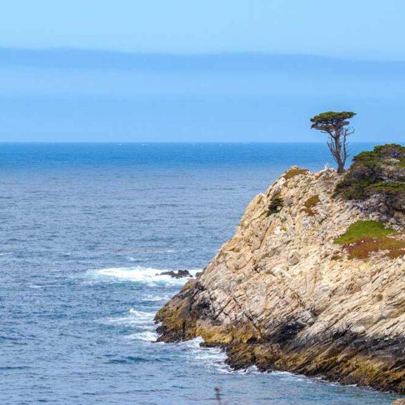 Point Lobos Headland, California