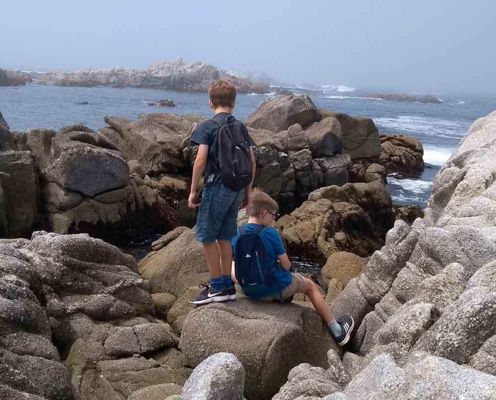 Rocks at Pacific Grove, Monterey, California