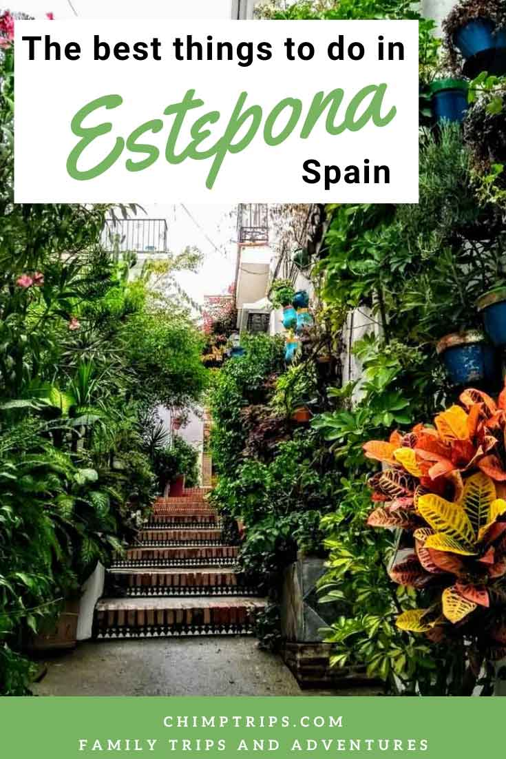 An image of a typical Estepona street in Spain, steps and hanging baskets either side