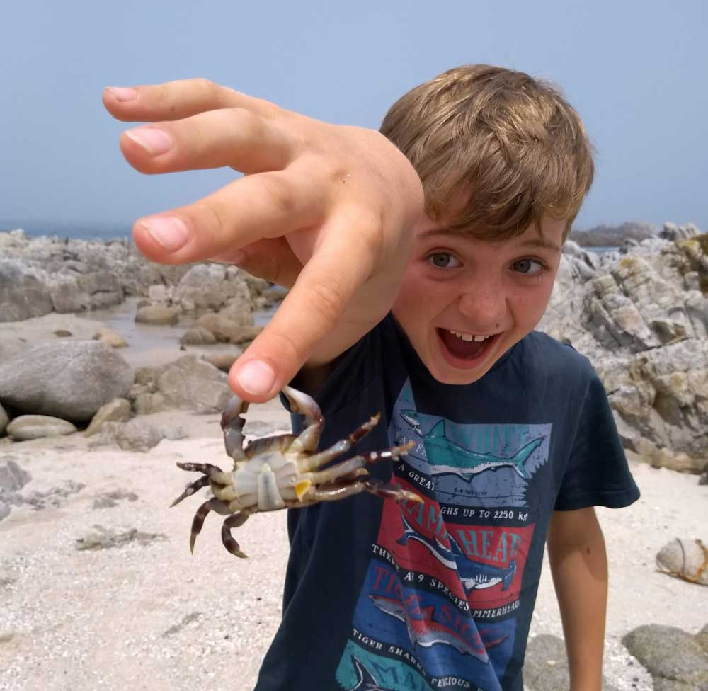 Boy with crab biting his finger on Monterey Bay coastal trail