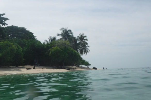 view of Turtle Island in Borneo from the sea