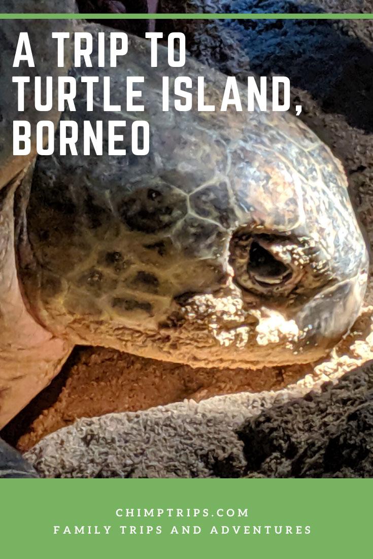 CHIMPTRIPS - A trip to Turtle Island, Borneo