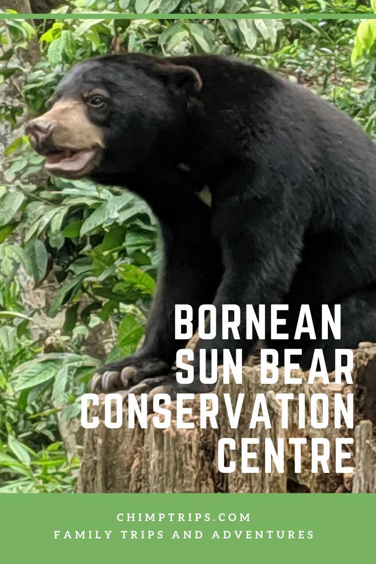 CHIMPTRIPS - Bornean Sun Bear Conservation Centre