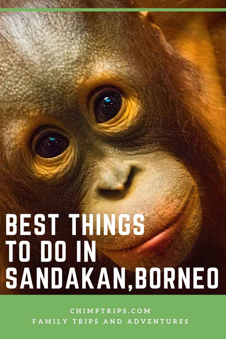 CHIMPTRIPS - Best things to do in Sandakan