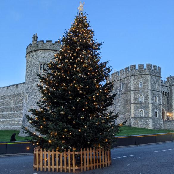 Christmas tree outside Windsor Castle, England