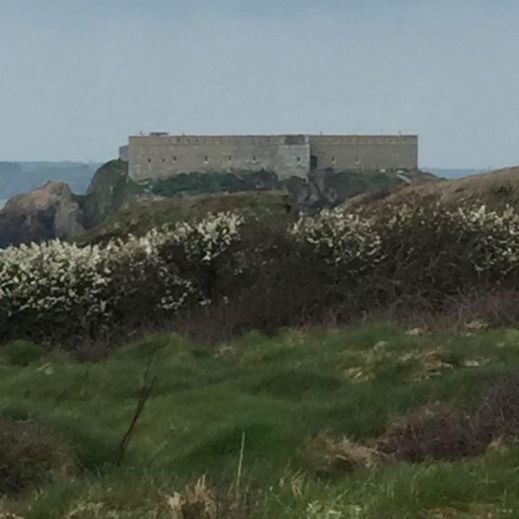 Thorn Island, Castlemartin peninsula, Pembrokeshire, Wales