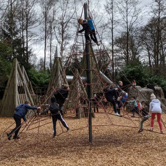 Iamge of children playing on a climbing net at Moors Valley Country Park