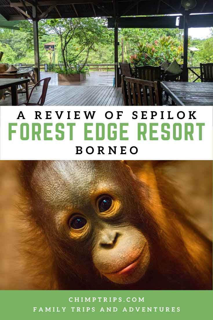 Pinterest page - A review of Sepilok, Forest Edge resort, Borneo