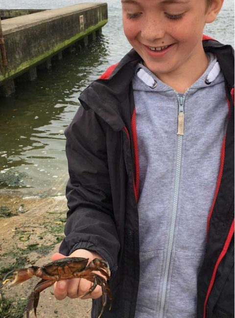Boy smiling holding large crab caught at Mudeford Quay