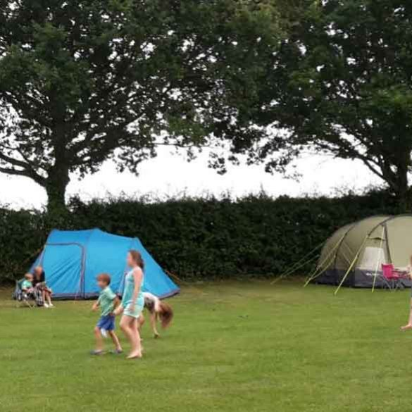 Children enjoying themselves in the car free campsite