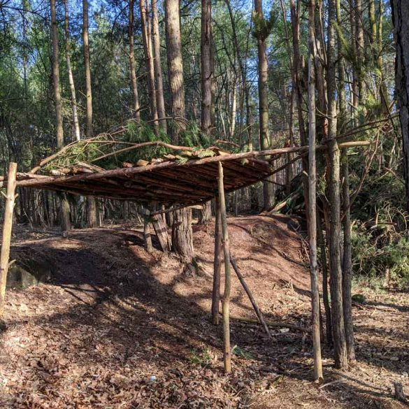 A Den made from wood in Swinley Forest