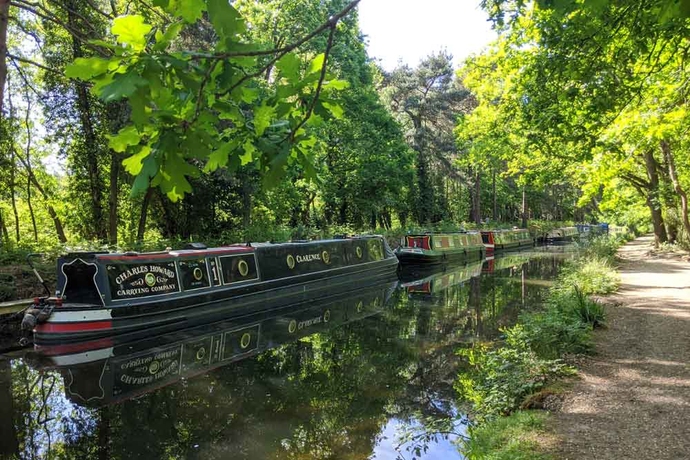 View of a Line of Basingstoke Canal Boats from tow path