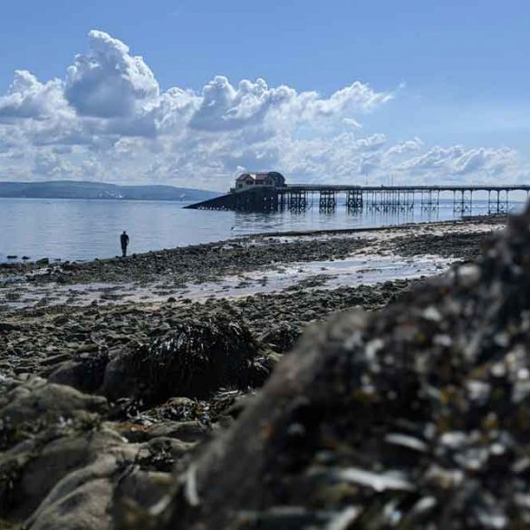 View of Mumbles Pier with sea weed covered rocks in foreground
