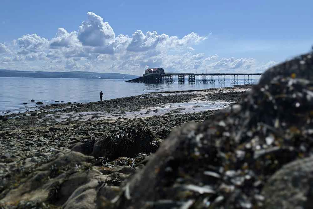 View of Mumbles Pier with sea weed covered rocks in foreground, Gower Peninsula, Wales