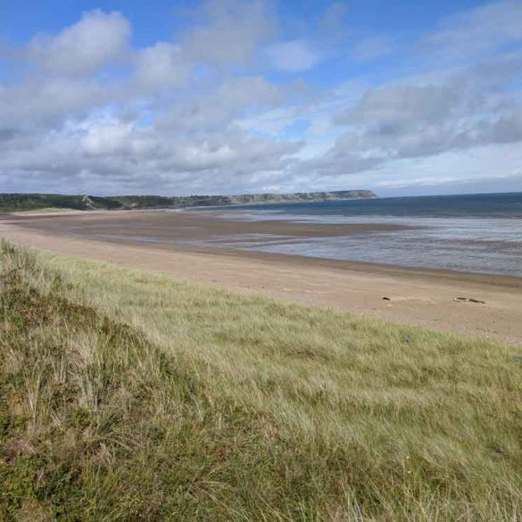 View of Oxwich Bay Beach from , Gower Peninsula