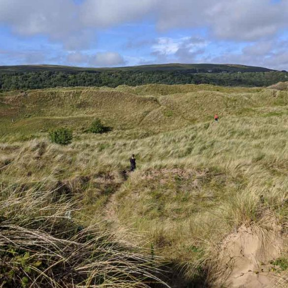 sand dunes at Oxwich Bay Nature reserve