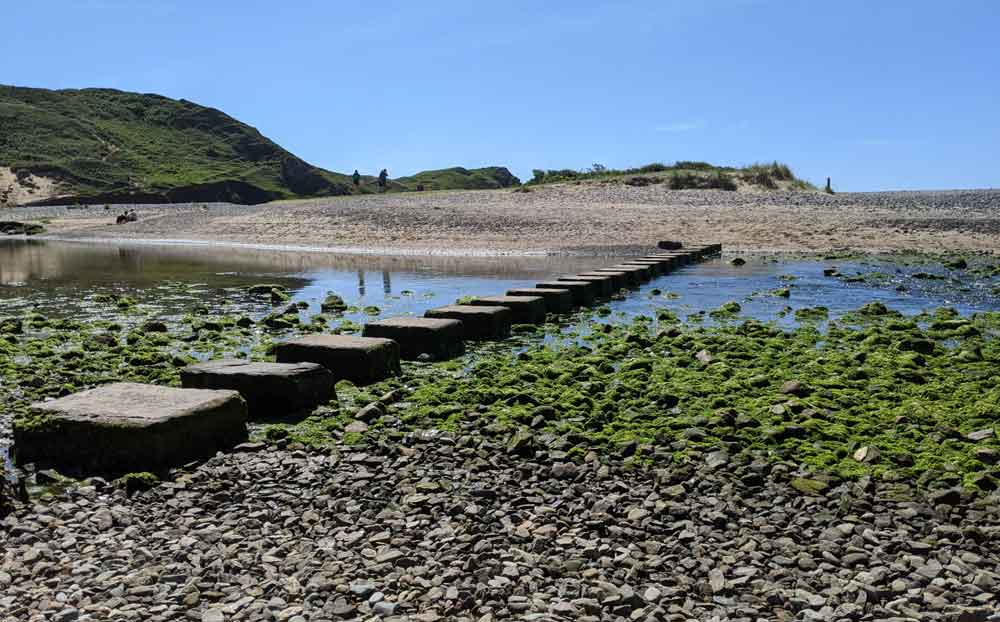 Pennard Pill stream stepping stones