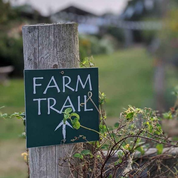 Fresh winds Farm Trail sign at Freshwinds Camping Sussex