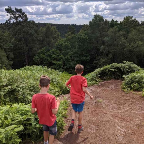 Top of Gibbet Hill, Devils Punchbowl, HIndhead, Surrey, UK