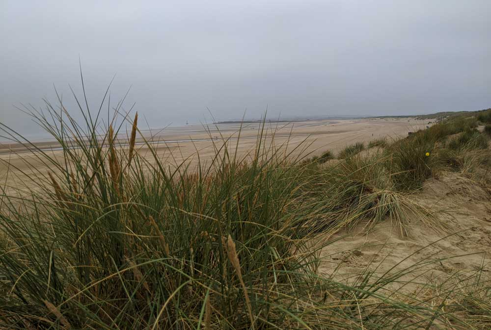 View of Camber Sands from dunes, East Sussex, England