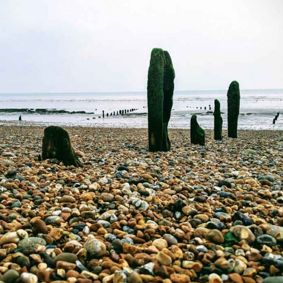 Pebbled beach and old Groynes, Winchelsea Beach, East Sussex, England
