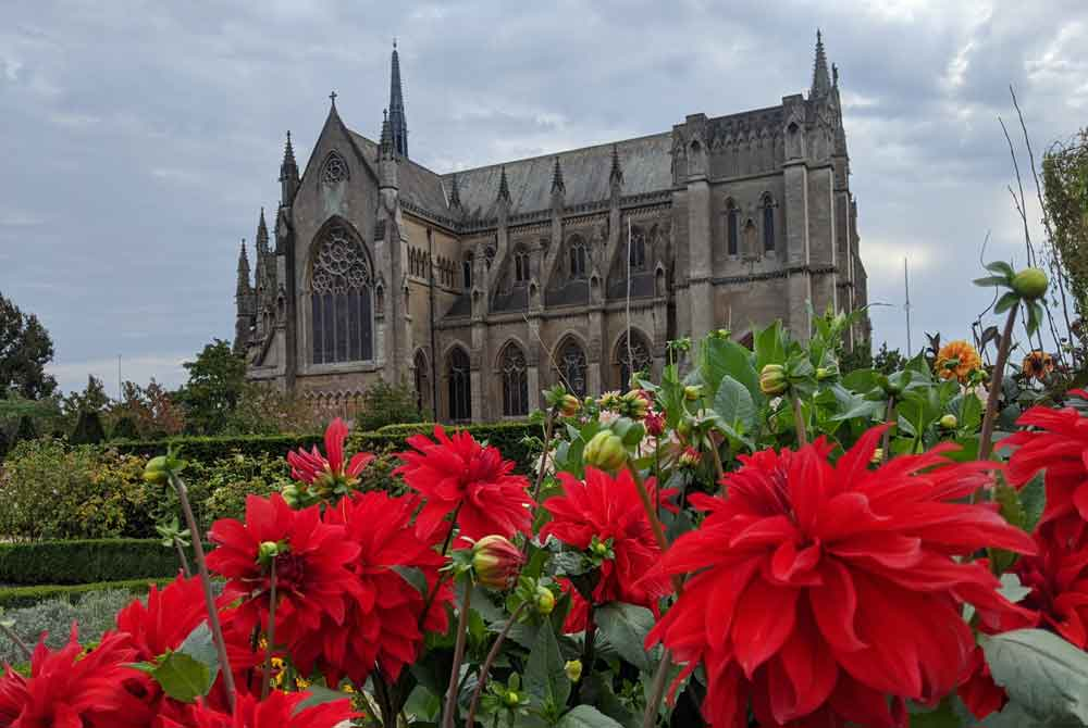 view of Arundel Cathedral with red flowers from castle gardens