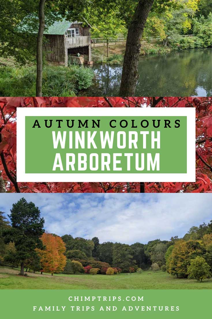 Pinterest: Autumn Colours at Winkworth Arboretum