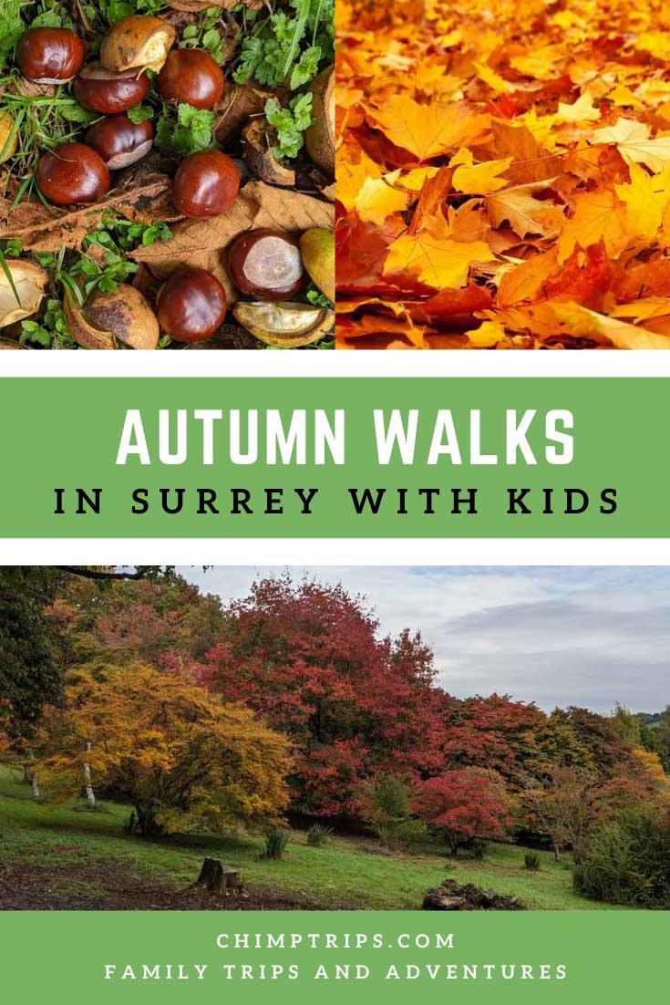 Pinterest: Autumn Walks in Surrey with Kids