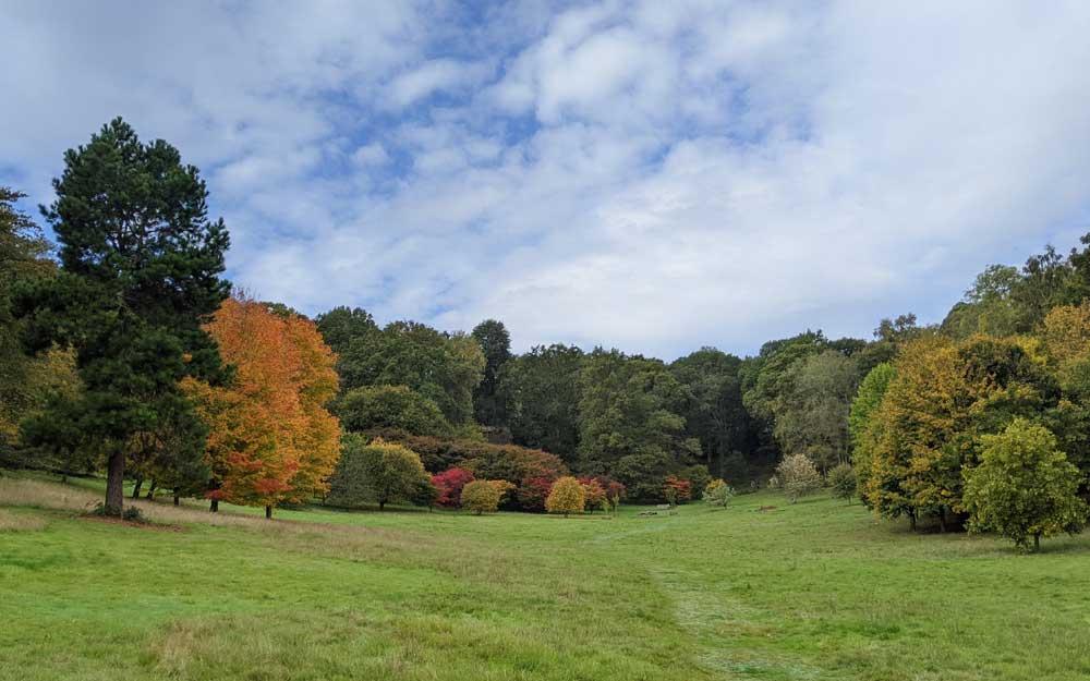 Autumn colours, Badgers Bowl at Winkworth Arboretum, Goldaming, Surrey