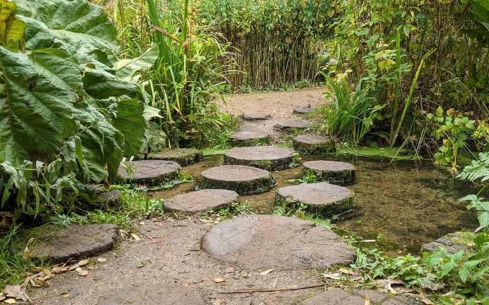 Isabella Plantation Stepping Stones, Richmond Park, London, UK