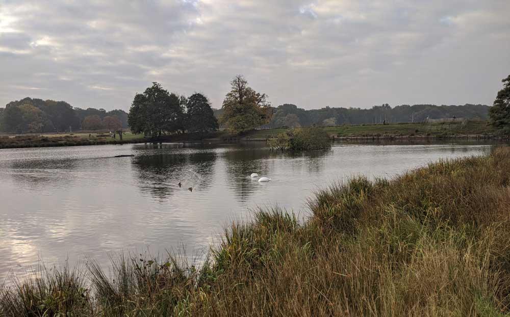 Pen Ponds, Richmond Park, London, UK