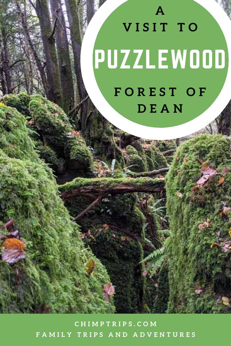 Pinterest: A visit to Puzzlewood, Forest of Dean