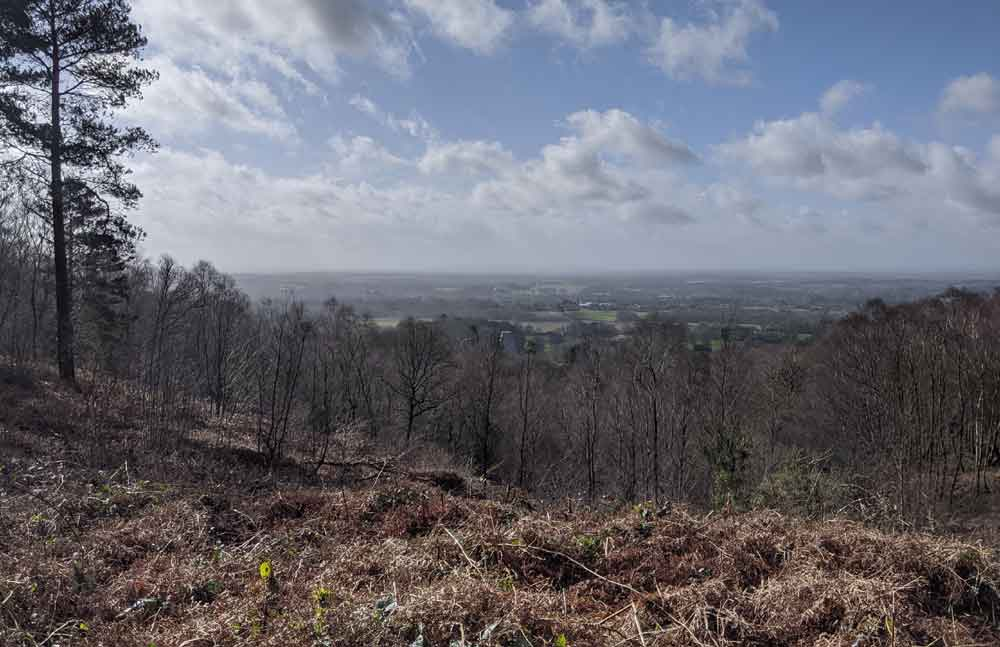 Views of Surrey from Winterfold Donkins, Surrey