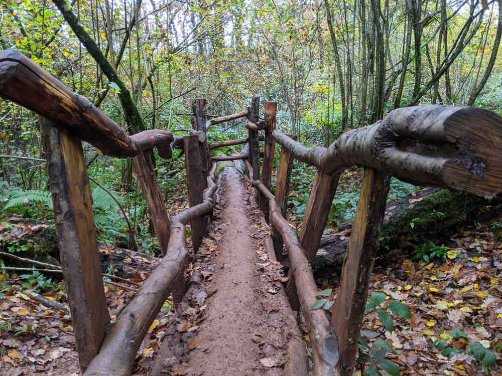 Wooden structures, Puzzlewood, Coleford, UK