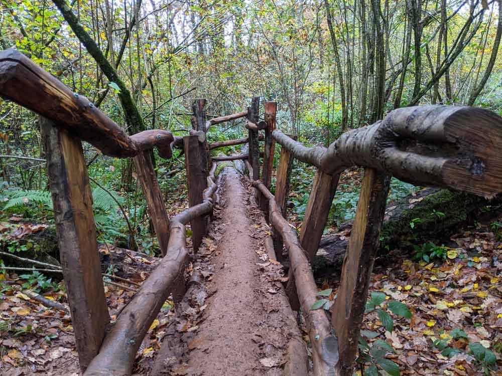 Wooden bridge, Puzzlewood. Coleford, Forest of Dean, UK