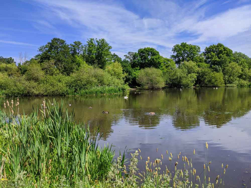 View across Balancing Pond at Sandhurst, Berkshire, UK