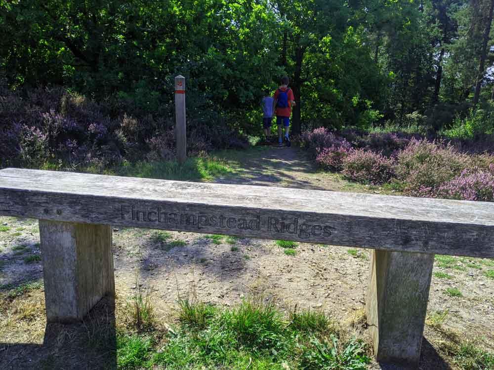 Bench at Entrance to Finchampstead Ridges, Berkshire, UK