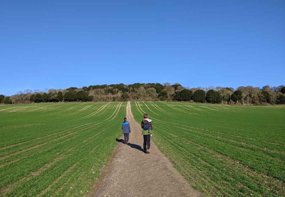 Two Boys walking in field at Newland's Corner, Surrey Hills, UK