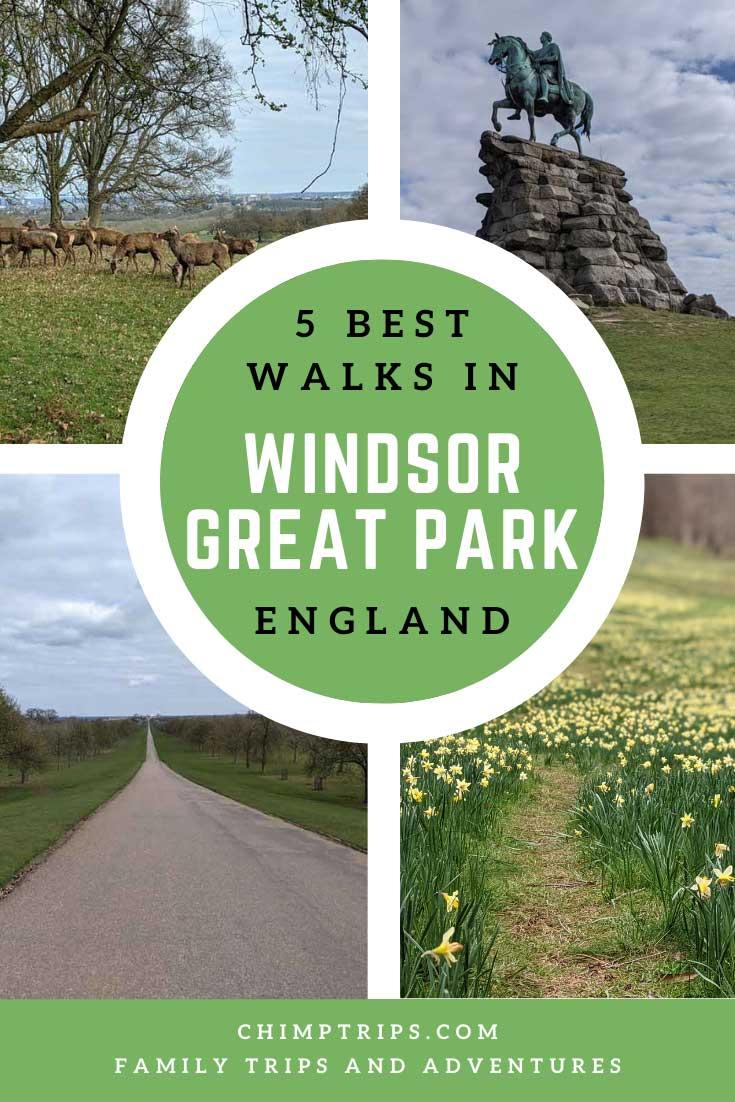 Pinterest: 5 Best walks in Windsor Great Park